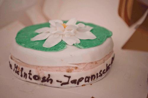 schrueppe-mcintosh-japanische-seerosen-ausstellung-7